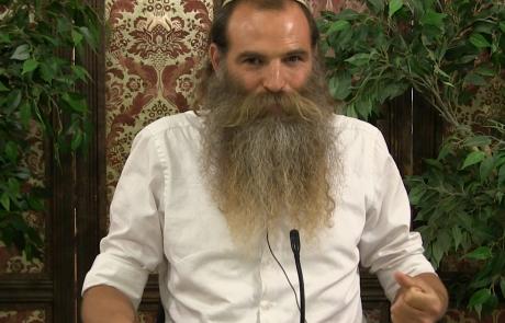 בחינת המלכות | הר' מיכי יוספי