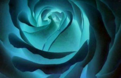 הרב אריק נווה – סודות הקבלה להתפתחות רוחנית / הרצאה 6