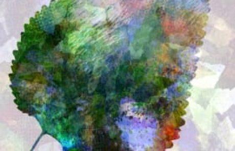 אייל בנימין קרוצ'י – משנה את הציור