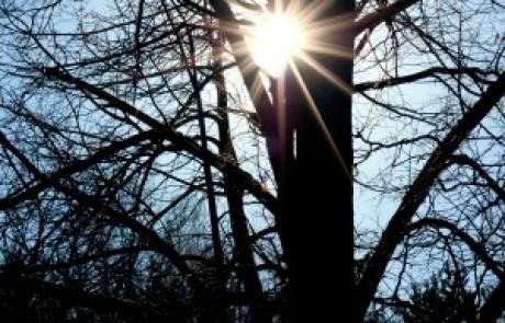 הרב עופר ארז – תחילת הברכה