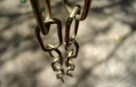 יאיר כלב – מעבדות לחירות