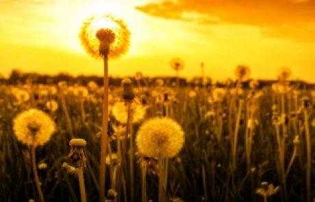 הרב שלום יוסף ברבי – הדרך להשגת כלים רוחניים