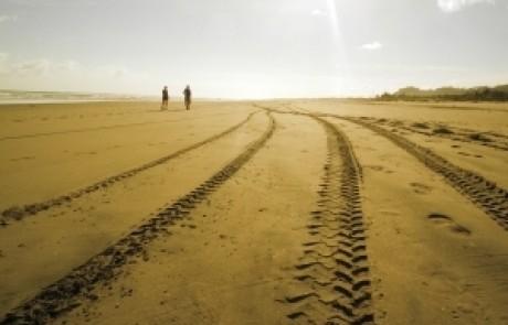 הרב שלום יוסף ברבי – ארבעת השיטות