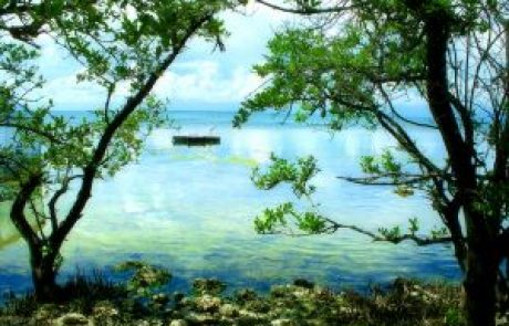 ר' אריק נווה – סודות הקבלה להתפתחות רוחנית / הרצאה 1