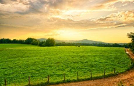 הרב עופר ארז – נקודת הנתינה