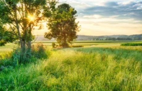 הרב עופר ארז – מעשה מהשבעה בעטליר'ס