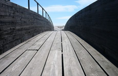 מסע ישראלי – אֲנִי לוֹקֵחַ אַחֲרָיוּת | גיליון 'נקודה טובה' לפרשת חיי-שרה | משה רוט
