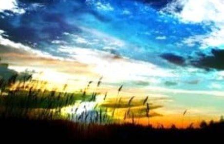לשמור על השכל שלא ישגה – 'נקודה של אור' בפרשת השבוע – ויחי / אייל בנימין קרוצ'י