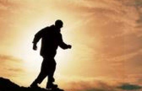 'נקודה של אור' בפרשת השבוע – לאן כולם הולכים?? / אייל בנימין קרוצ'י